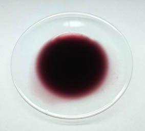 Fialové kosmetické barvivo 10 ml